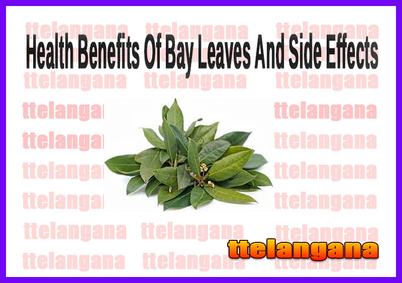 Health Benefits Of Bay Leaves And Side Effects