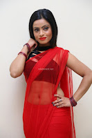 Aasma Syed in Red Saree Sleeveless Black Choli Spicy Pics ~  Exclusive Celebrities Galleries 100.jpg