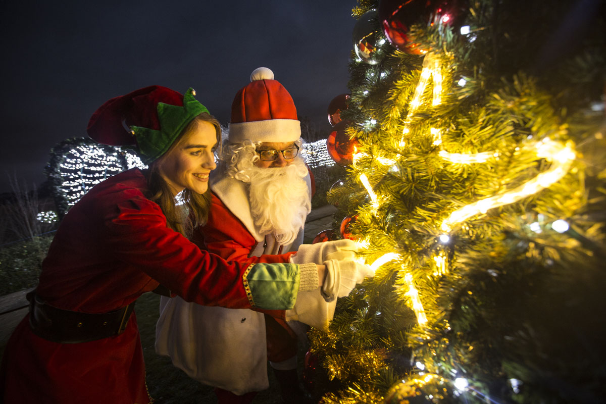 Christmas at Wynyard Hall - A guide to what's on in December including Festive Afternoon Tea and a Winter Wonderland Christmas Light Show in the gardens.  - Visit Father Christmas
