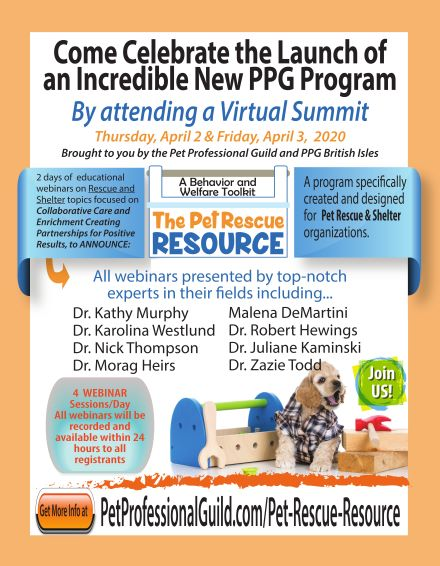 The PPG Virtual Summit and a Wag Giveaway