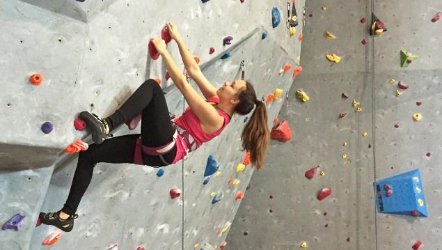 Mengenal Beragam Jenis dan Materi Rock Climbing