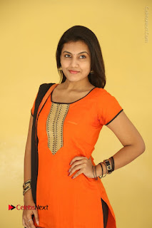 Telugu Actress Chandana Stills in Salwar Kameez at Karam Dosa Movie Press Meet  0005.JPG