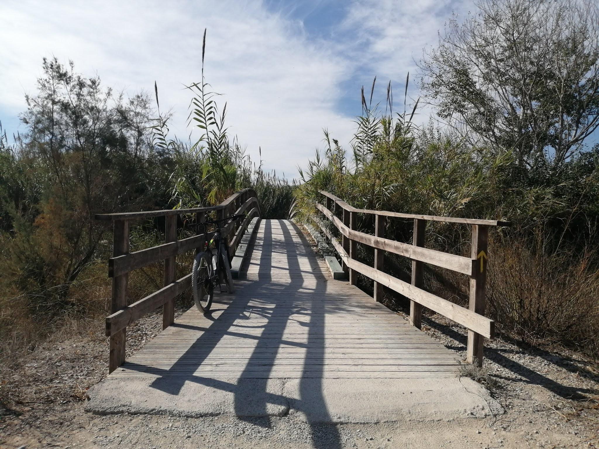 Wooden bridge across the River Turia near Manises, Valencia