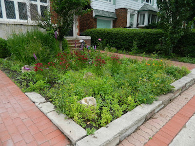 Paul Jung Gardening Services Avenue Road Toronto Front Garden Cleanup Before