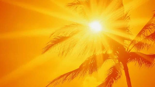 Heat may reach up to 50 degrees in 4 Regions of Saudi Arabia - Meteorology