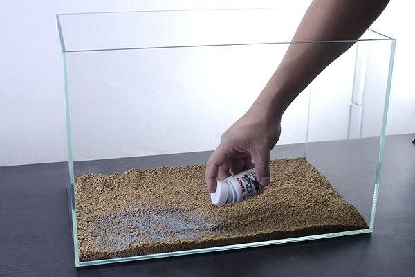 Cara Membuat Aquascape Sederhana Murah Meriah - BLOG PERANTAU