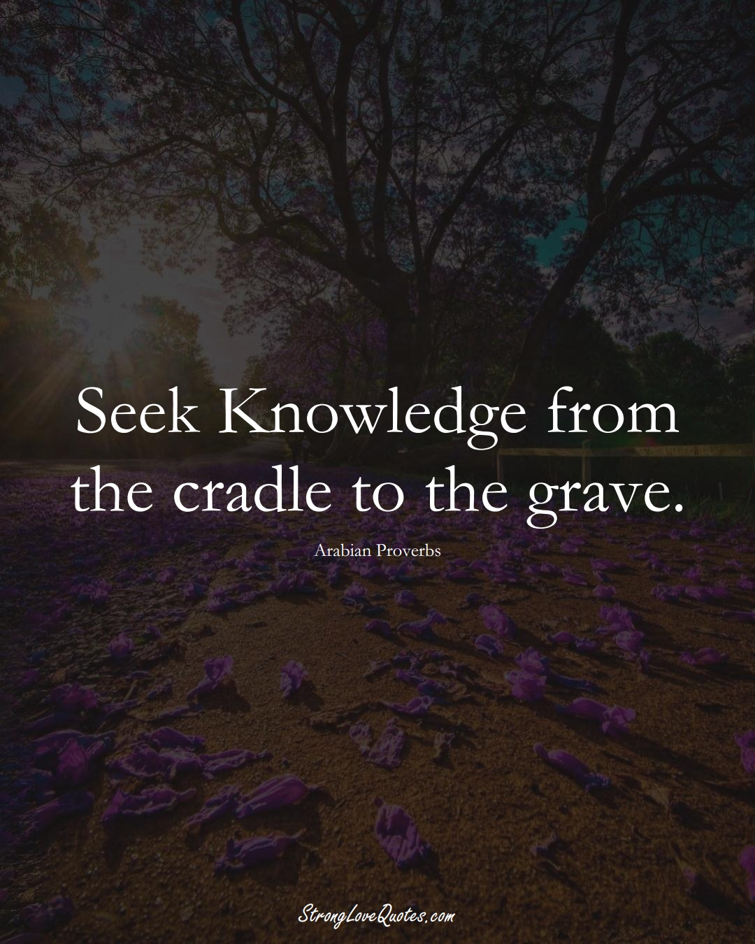 Seek Knowledge from the cradle to the grave. (Arabian Sayings);  #aVarietyofCulturesSayings