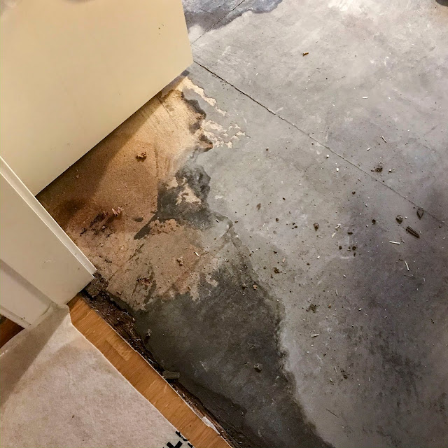 golvrivning, vattenskada