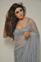 Actress Sony Charistha Latest Pos in Silver Saree at Black Money Movie Audio Launch  0011.jpg