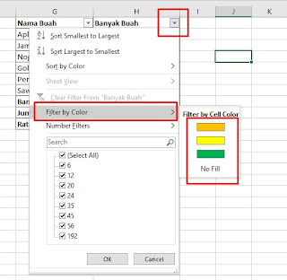 Filter by Color in Excel