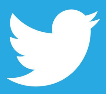 TOLERANCIAS REFLEXIVAS: Tweet, tweet, ¡twitter! PÁJARO BLANCO ...