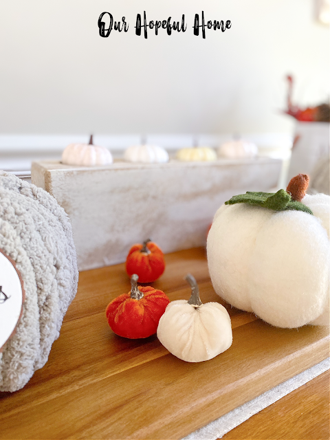 gray chunky yarn pumpkin white baby boo pumpkin sugar mold