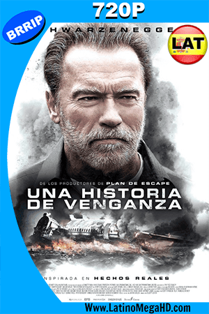 Aftermath: Una Historia De Venganza (2017) Latino HD 720p ()