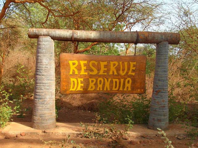 LA RESERVE DE BANDIA : Parc, animaux, visite, tourisme, sauvage, oiseaux, LEUKSENEGAL, Dakar, Sénégal, Afrique