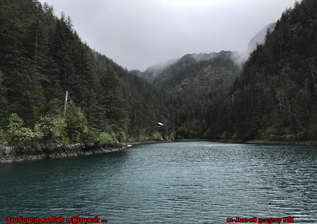 Resurrection Bay Cruise tours Alaska