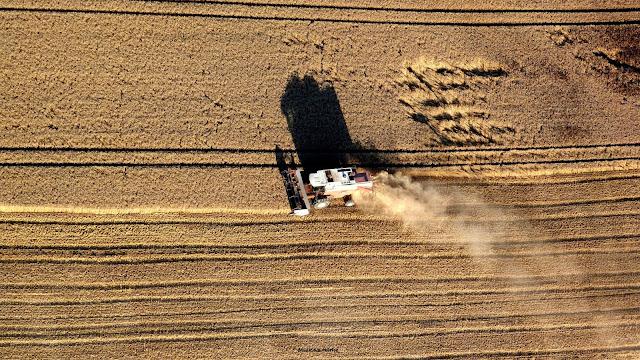 travail des champs pour les moissons