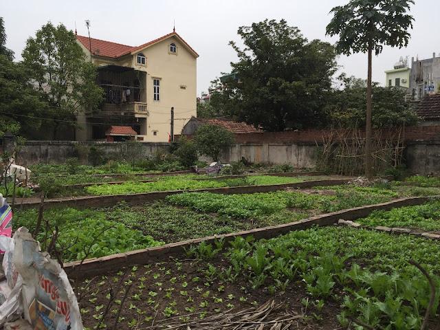 Vị trí mảnh đất thổ cư giá rẻ xóm 4A Đông Ngạc, Bắc Từ Liêm