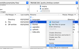 Ubah Nama Folder Plugin