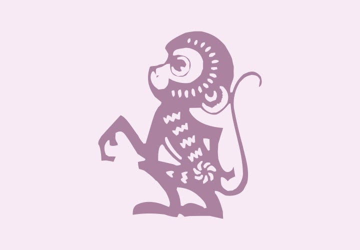 Anul Maimutei