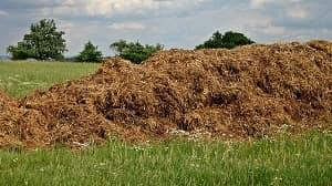 Pupuk organik memiliki jenis-jenis yang berbeda untuk digunakan pada tanaman kehutanan. Biasanya, jenis-jenis pupuk organik terdiri dari 3 jenis yakni pupuk kandang, pupuk hijau, dan kompos.