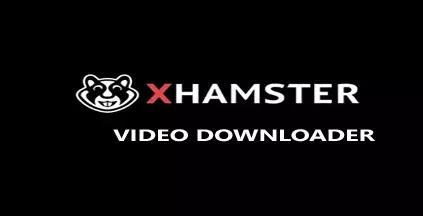 Xhamster Video Downloader Apk for Windows 10