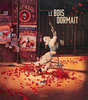 http://lachroniquedespassions.blogspot.fr/2016/10/le-bois-dormait-de-rebecca-dautremer.html