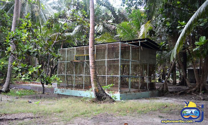 fasilitas di pulau semut besar