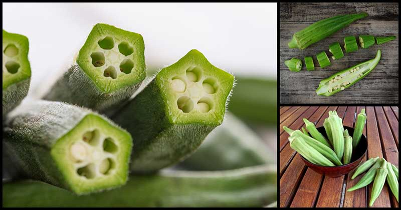 Regular Consumption Of Okra May Help Lower The Risk Of Heart Diseases