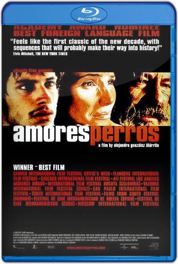 Amores Perros (2000) HD 1080p Español Latino