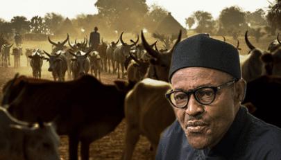 Declare herdsmen terrorist group now — Onitiri