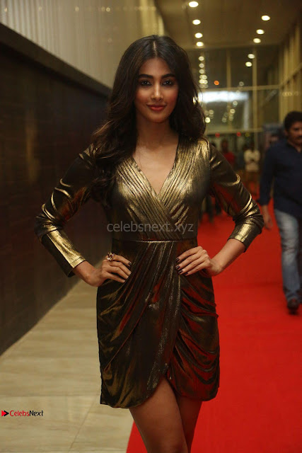 Pooja Hegde looks glamarous in deep neck sleevless short tight golden gown at Duvvada Jagannadham thank you meet function 009.JPG