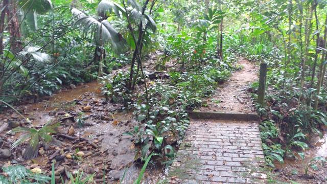 viajes al putumayo colombia