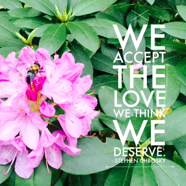 #love #bee #flower #quotes #rhododendron