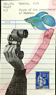beta fighting fish binoculars french postage stamp library card Dada Fluxus mail art collage