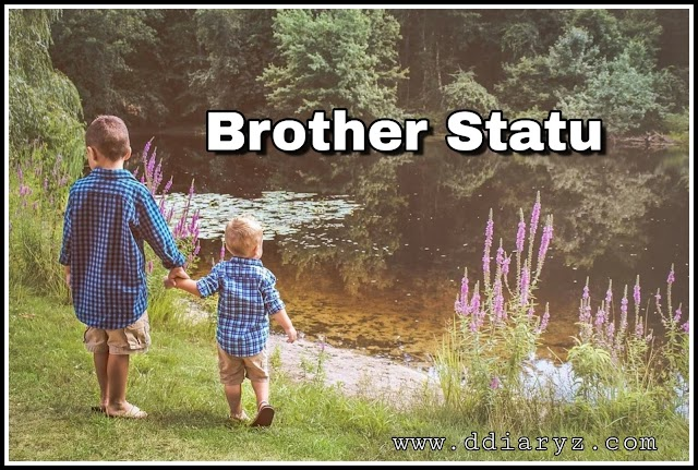 221+ Best Brother Status and Wishes[2020] for WhatsApp , Facebook and Instagram in English