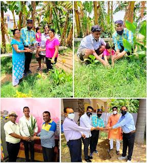 जनपद बागपत में हर्षोल्लास के साथ मनाया गया विश्व पर्यावरण दिवस  | #NayaSaberaNetwork