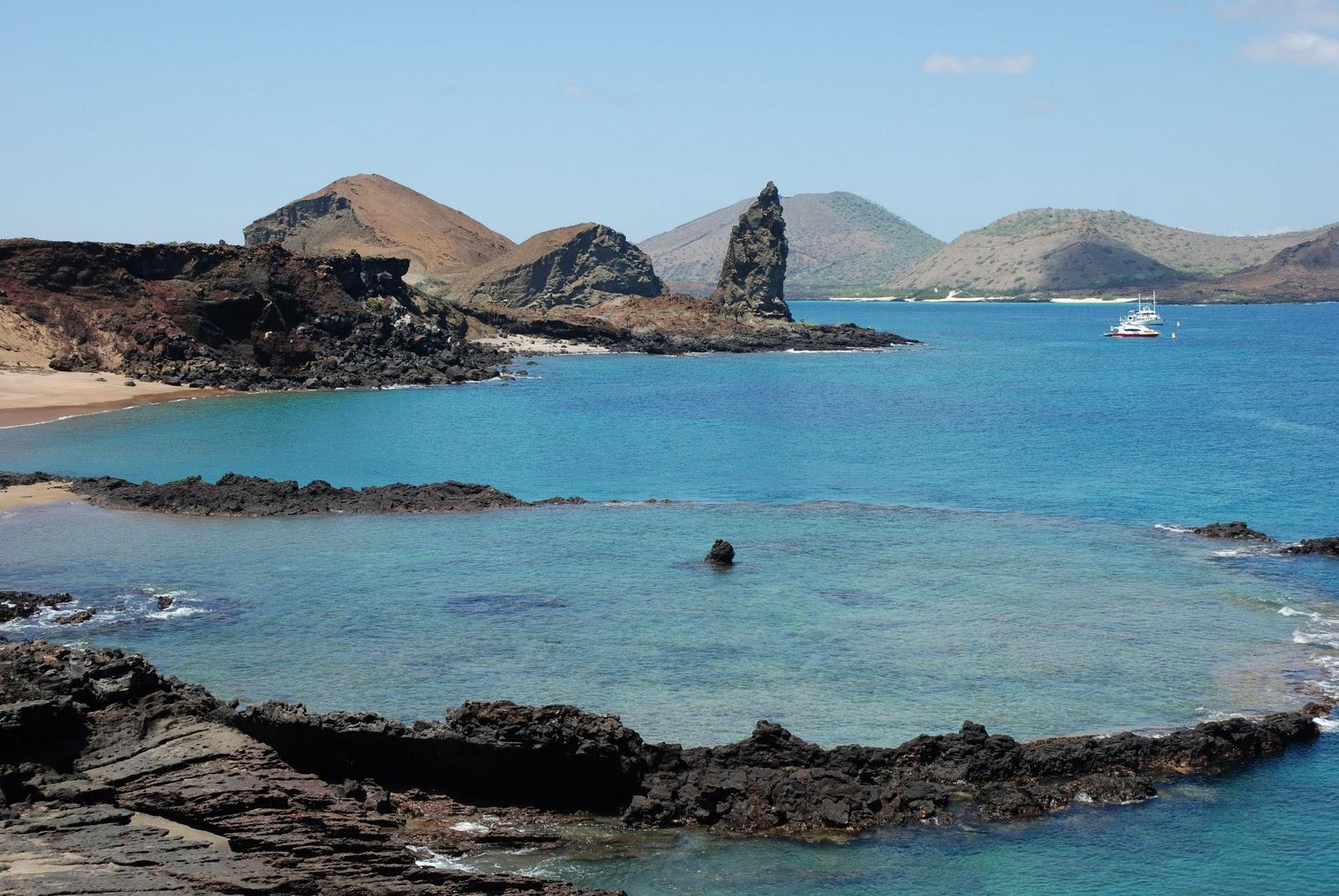 Phoebettmh Travel Ecuador Galapagos Wildlife Spotting