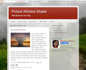 Picture Window Shade Theme