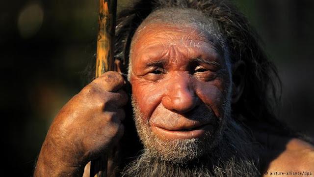 Pesquisadores divulgam primeira descoberta de um ancestral humano híbrido