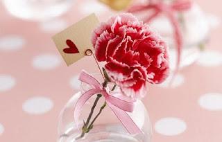 anyelir-valentine