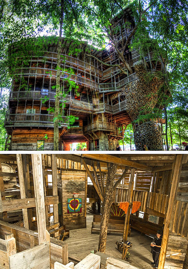 Horace Burgess'second Treehouse