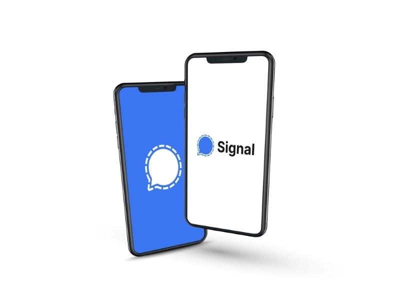 تطبيق سيجنال signal البديل للواتس اب بكل تفاصيله