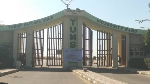 LIST OF COURSES OFFERED BY YUSUF MAITAMA SULE UNIVERSITY, KANO, KANO STATE