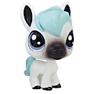 LPS Series 1 Special Collection Dawny Burrita (#1-15) Pet