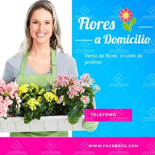 plantilla de anuncio para promocionar y buscar trabajo de florista o jardinera