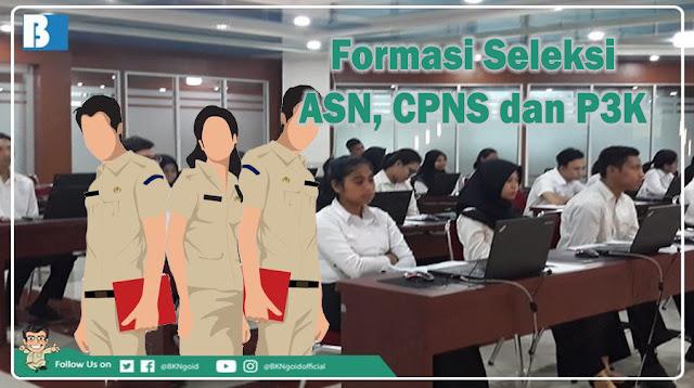 Jumlah Formasi Seleksi ASN, CPNS dan P3K