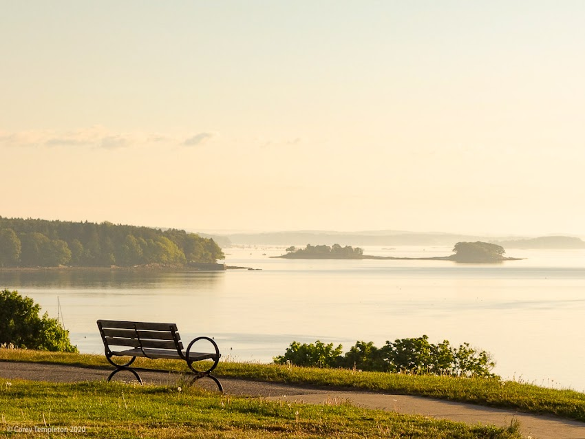 Portland, Maine USA June 2020 photo by Corey Templeton. Warm morning light on the Eastern Promenade, looking up the coast.