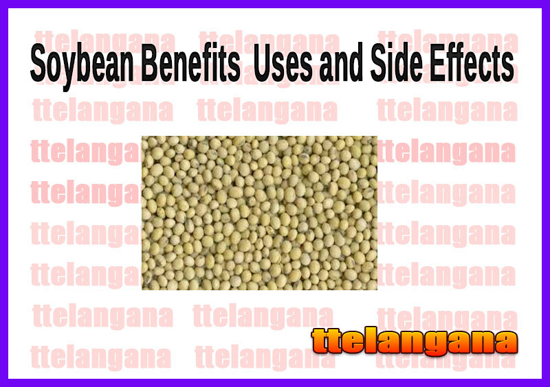 Soybean Benefits  Uses and Side Effects