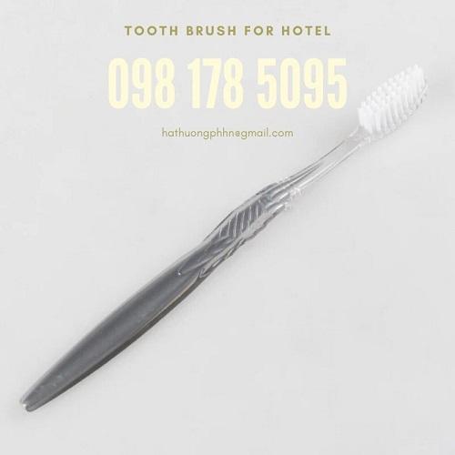 Bàn chải dùng 1 lần dành cho khách sạn, khu du lịch, resort,…giá cực tốt, có sẵn.