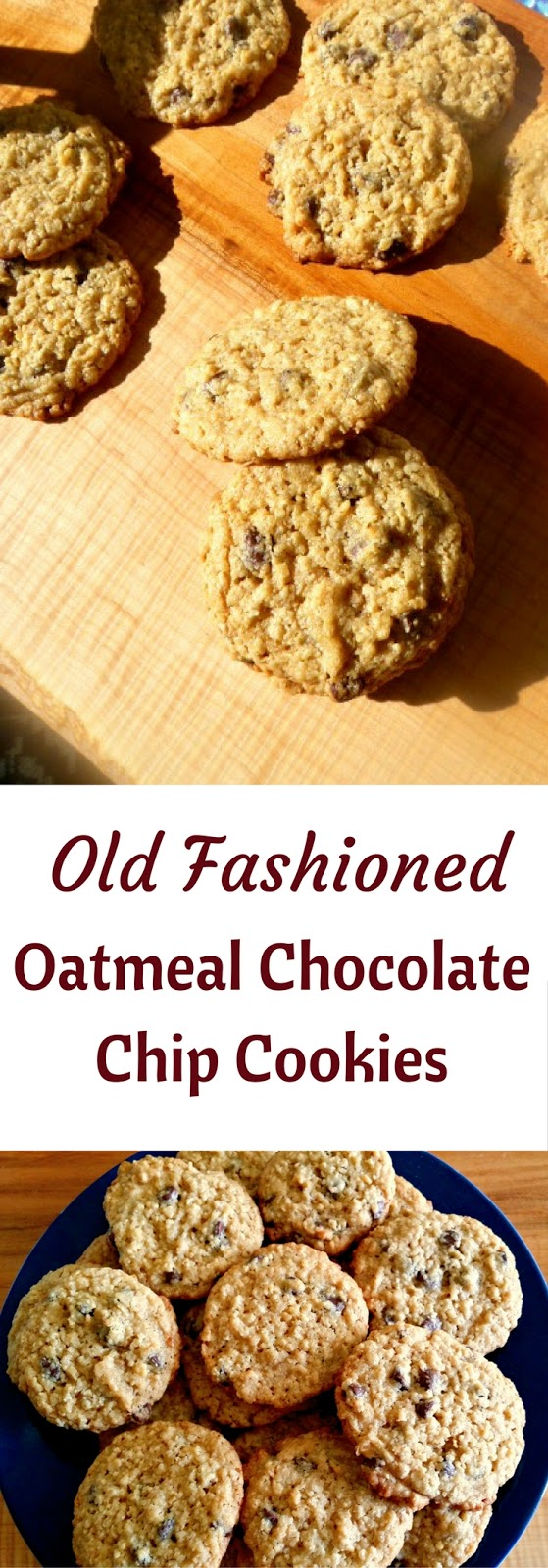 Slice Of Southern Old Fashioned Oatmeal Chocolate Chip